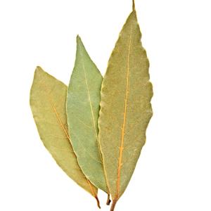 Laurel / Bay leaves